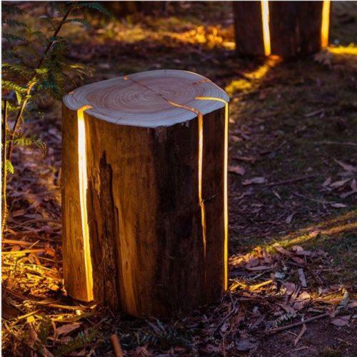 בול עץ מואר דקורטיבי